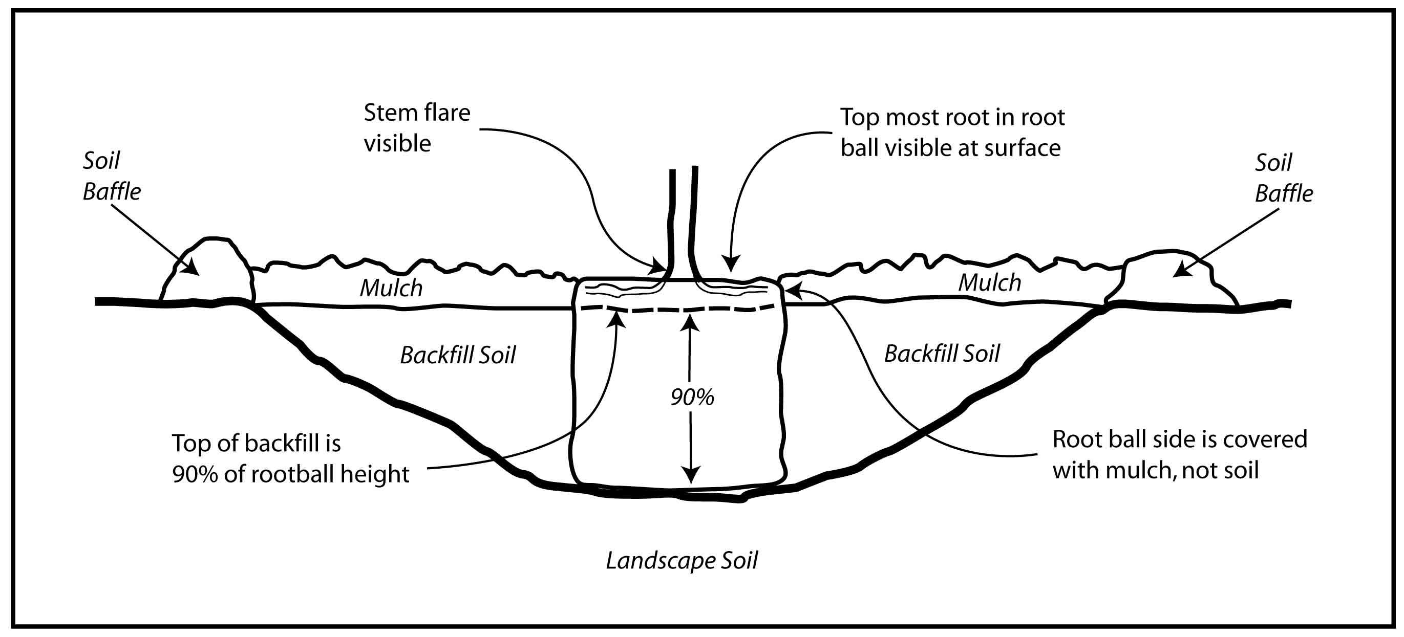 Horseshoe Pit Diagram